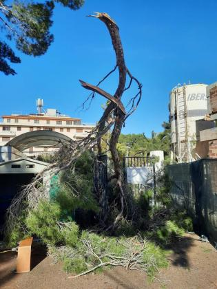 El portavoz adjunto de la Aemet en Baleares ha precisado que no se ha producido un cap de fibló, sino una línea de tormentas con fuertes rachas de viento.