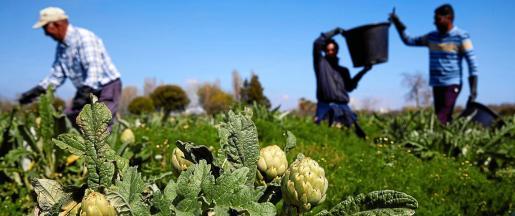 La jornada reflexionará sobre el modelo de negocio de la agricultura y cómo interpretar el contexto actual del sector.