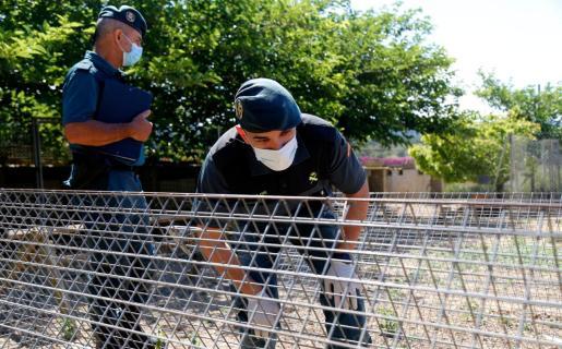 El Seprona de la Guardia Civil se hizo cargo de la investigación del fallecimiento del perro.