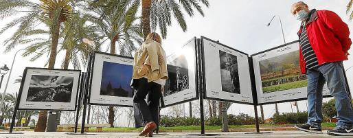 La exposición fotográfica está instalada en el Passeig de Sagrera de Palma.