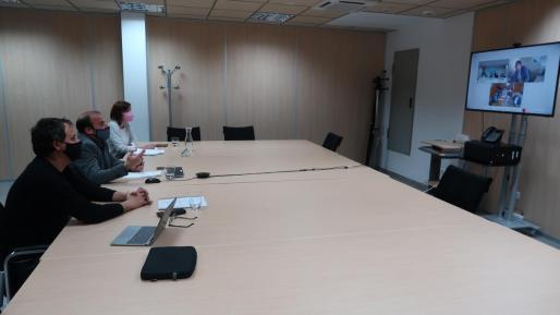 Imagen de la reunión telemática que han mantenido Baleares y Canarias.