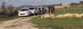 La Policía frustra una comida de 12 familias en Manacor