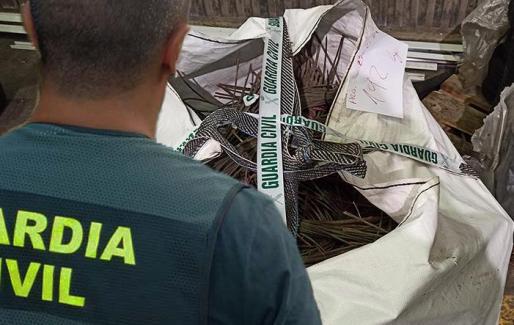Tras la investigación llevada a cabo por el equipo ROCA de la Guardia Civil, se identificó a los presuntos autores, que una vez localizados fueron detenidos.