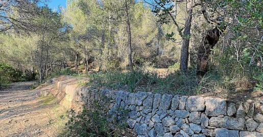 Son Puigdorfila es una de las entradas de Palma a la Serra y conserva sus valores naturales y etnológicos.
