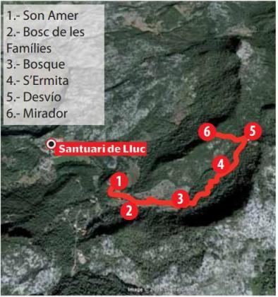 La ruta del bosque sagrado: de Son Amer al Mirador del Centenari.
