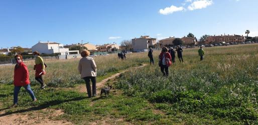 Amics de la Terra se opone a parques solares como los ideados en Bunyola y Marratxí. Movilización contra el parque solar de Son Bonet.