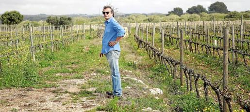 La viña empieza a tener brotes verdes y los viticultores están expectantes por saber si la próxima temporada turística consolidará su mejora respecto al año pasado.