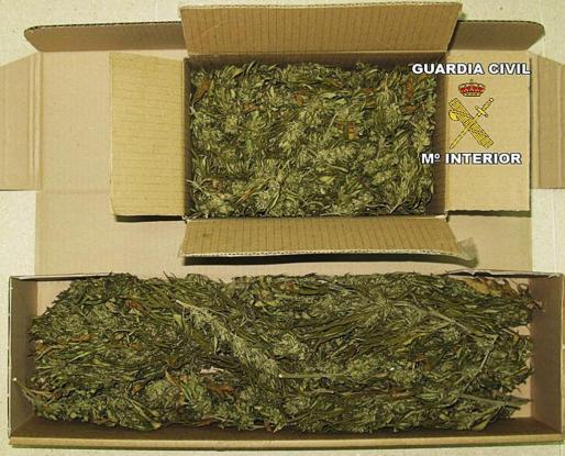 Parte de la droga intervenida por la Guardia Civil en Lloret.