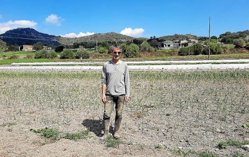 Jaume Adrover explica su trabajo en la finca de Can Pocarroba de Son Macià, en el municipio de Manacor.