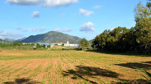 Imagen de la parcela ubicada junto a la autopista de Ponent, en la entrada de Santa Ponça. Foto:J.R