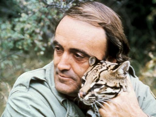 Telecinco tendrá que indemnizar a la familia del naturalista, fallecido hace 20 años.