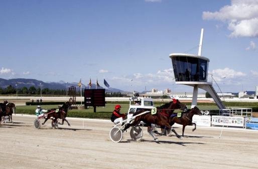 Imagen de archivo de una carrera de trot celebrada en Palma.