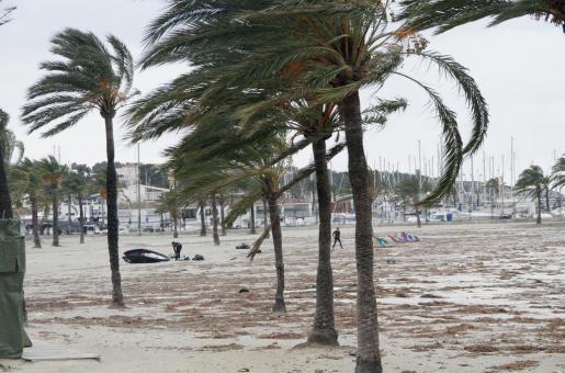 Los efectos de la tormenta se han dejado notar en zonas como la Platja de Palma.