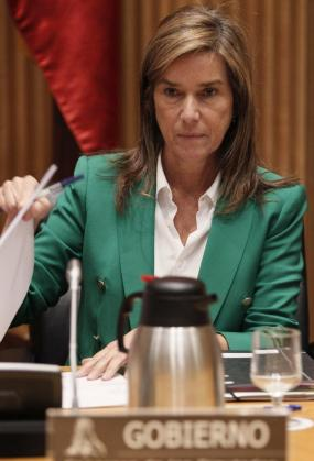 La ministra de Sanidad, Servicios Sociales e Igualdad, Ana Mato, en una imagen de archivo.