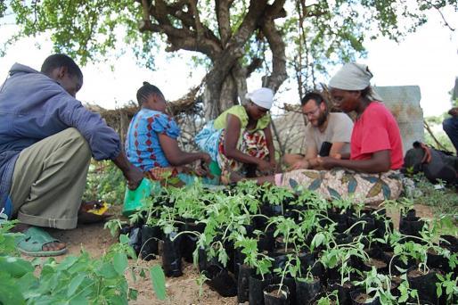 A la izquierda, el joven Jaume Pou muestra a los aldeanos cómo cultivar el tomate de 'ramellet'. A la derecha, el huerto y el hostal de los voluntarios .