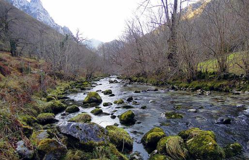 El río Cares despliega toda su belleza
