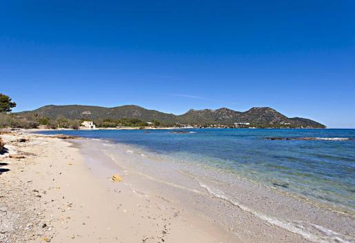Sa Marjal es la playa más extensa de Son Servera.