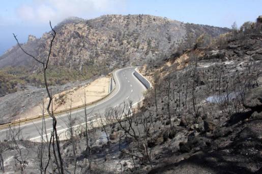 Imagen desoladora de la zona de la Serra incendiada.