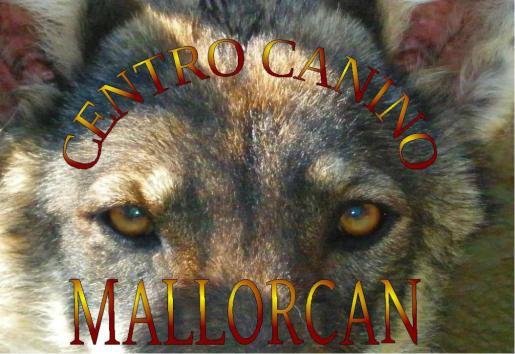 Centro Canino Mallorcan