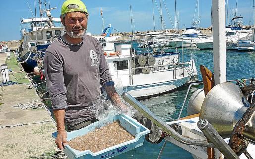 Un pescador muestra un cajón de 'jonquillo' recién pescado.