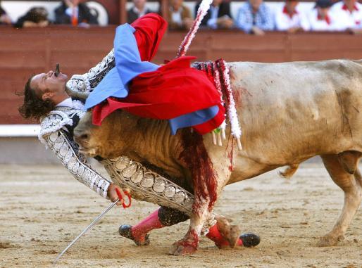 El diestro Julio Aparicio es cogido en el cuello por el primer toro, de la ganadería de Juan Pedro Domecq, en el festejo que se está celebrando en la plaza de toros de Las Ventas correspondiente a la feria de San Isidro.