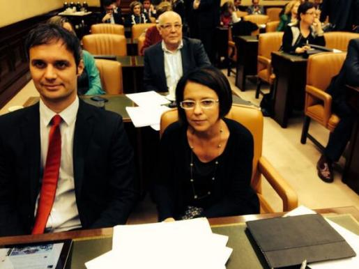 Pablo Martín y Sofía Hernanz, durante la comisión que ha abordado hoy en el Congreso las prospecciones petrolíferas.