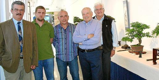 Teodoro Pou, Agustí Cánoves, José Fernández, Antonio Bauzá y Bartomeu Bauzá, ante los bonsáis que se expusieron durante varios días al público.