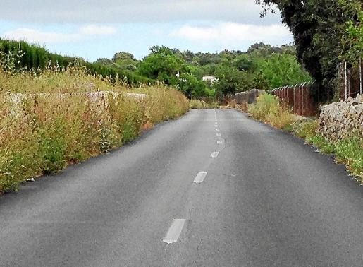 Los márgenes de la carretera hacia Son Negre-Son Carrió, llenas de maleza. Fotos: G.M.