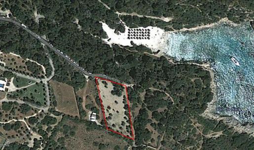 El solar ubicado en la zona ANEI de Cala sa Nau se utiliza como aparcamiento.