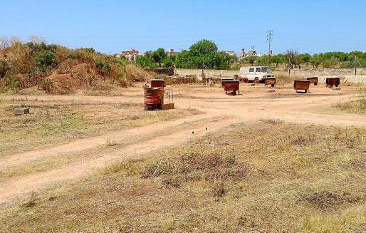 Imagen de los terrenos en los que viven los nueve podencos ibicencos en otros tantos bidones vacíos.