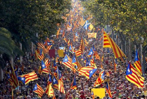 Una multitud ha participado en la gran 'V' humana de Barcelona con la que los catalanes reivindican su derecho a votar el 9-N para decidir su futuro.