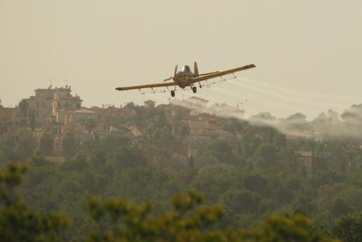 El Govern ya ha iniciado la fumigación aérea contra la procesionaria que ha generado quejas de vecinos, de partidos políticos y de grupos ecologistas.