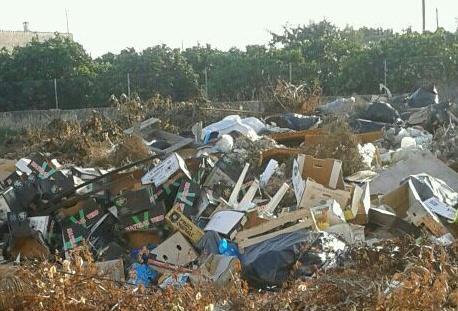 Imagen del vertedero incontrolado ubicado cerca del polideportivo de Binissalem.