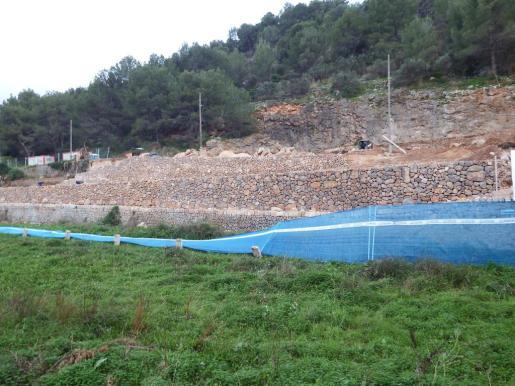 En la zona se están construyendo divesrsos marges sobre los cuales se sembrarán especies autóctonas.
