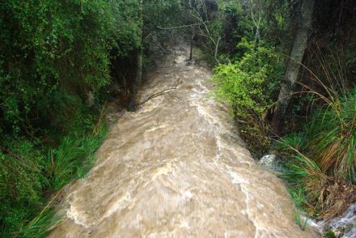 Así bajaba la mañana de este lunes el torrent de Solleric tras las últimas lluvias.