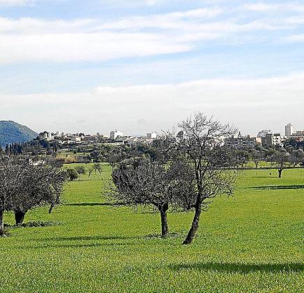 Vista de los terrenos en los que está previsto construir la variante.