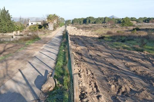 El GOB denuncia que se ha habilitado un camino en una zona protegida.