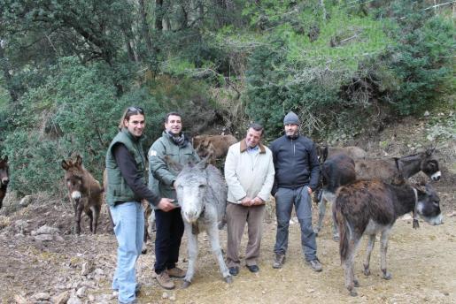 El conseller Biel Copany y miembros de la Fundación Natura Parc en la finca la Coma d'en Vidal, donde se están haciendo trabajos de prevención de incendios forestales mediante el uso de un rebaño de 32 asnos que pastan en una superficie de 13 hectáreas.