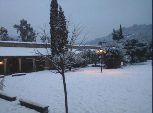 En Lluc continúa nevando y se registran temperaturas de 1 grado bajo cero.