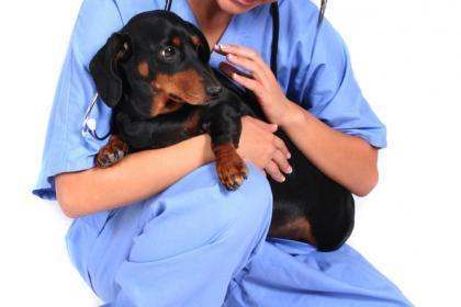 La clínica dispone de un servicio de urgencias.