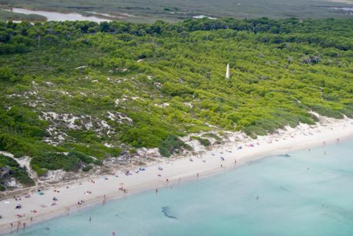 Es Comú es un tramo de playa virgen incluido en los más de 5 kms de costa de las Playas de Muro.