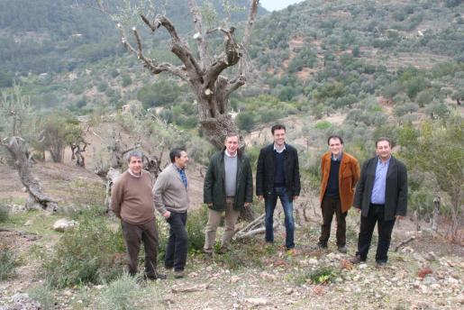 Joan Puig, Josep Oliver, Carlos Simarro, Jaume Juan i Miquel Bestard, en la finca Can Costumer.