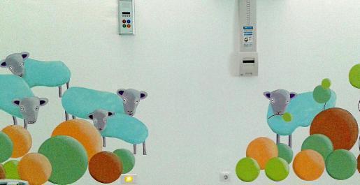 Estas ovejas las ha pintado la artista afincada en Formentera, Celia Jiménez.