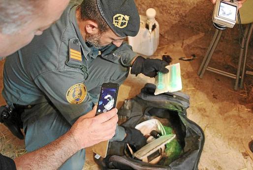 Los agentes del Seprona inspeccionan una bolsa con material en el hipódromo de Son Pardo.