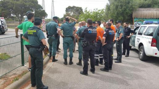 Imagen del amplio dispositivo policial habilitado para la búsqueda y captura de los monos fugados.