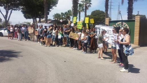 Los manifestantes, con pancartas en el entrada del Safari Zoo de sa Coma.