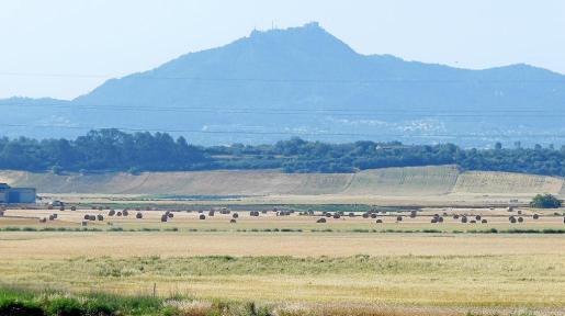 Estos días de final de mayo se ha empezado a embalar el forraje para los animales. En la imagen, el Pla de l'Anzell, en Vilafranca.