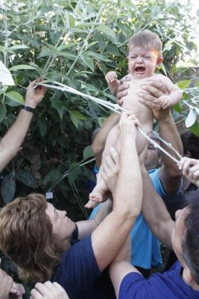 Los chiquillos pasan por las ramas del mágico árbol cuya savia se frota por la hernia. La sanación supera el 90 por ciento de los casos.