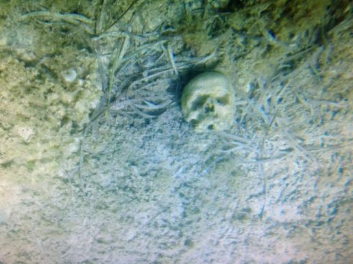 Imagen del cráneo hallado en el fondo del mar.