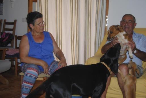 Magdalena Crespí y Joan Riutort, junto a sus perros 'Negre', 'Fosca' y 'Taca' en Santa Eugènia.